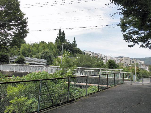 千里川 清谷橋 (1)