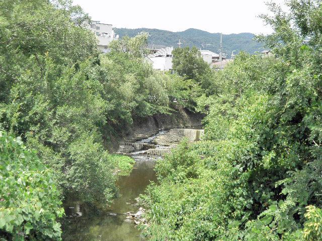 千里川 清谷橋 (8)