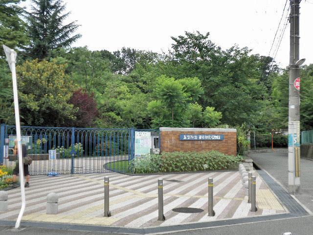 都市緑化植物園10