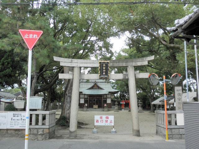 1610長島住吉神社 秋祭り (1)