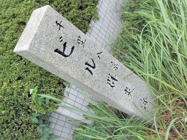 千里八景ビル群爽涼 (1)