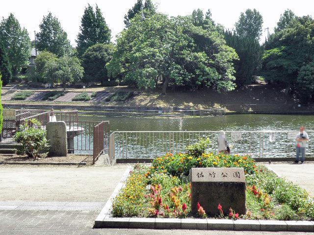 佐竹公園1610