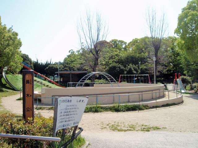 轟木公園1611