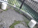 親水緑道 新豊島川 水門 マチカネくんマンホール (8)