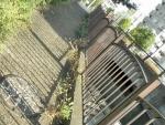 親水緑道 新豊島川 水門 マチカネくんマンホール (10)