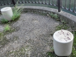 親水緑道 新豊島川 水門 マチカネくんマンホール (6)