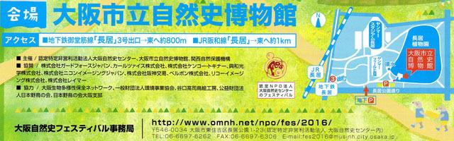 大阪自然史フェスティバル1611 (2)