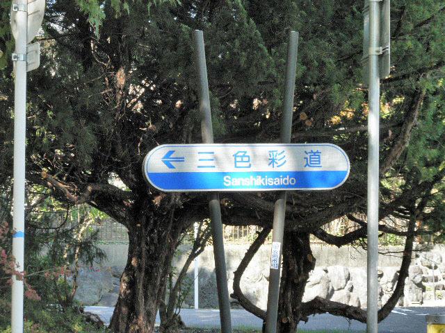 三色彩道1611秋 (1)