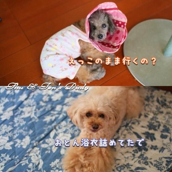 001IMG_6178.jpg