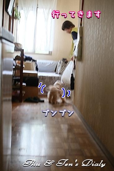 001IMG_8230.jpg