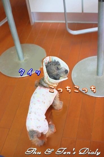 002IMG_7510.jpg