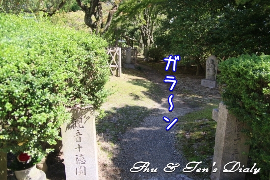 002IMG_8053.jpg