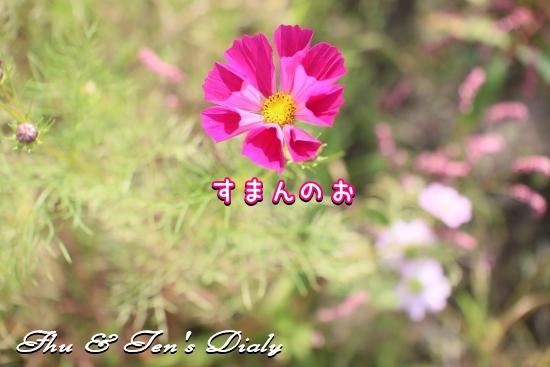 002IMG_8311.jpg
