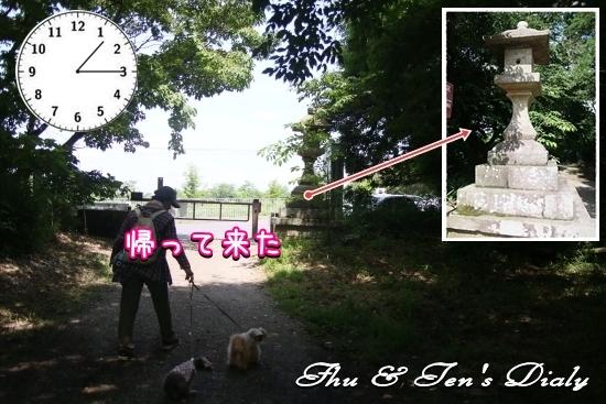 004IMG_5202.jpg