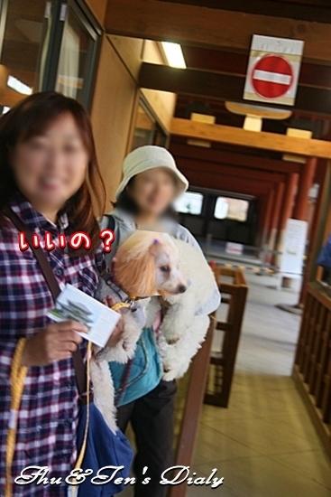 004IMG_9381.jpg