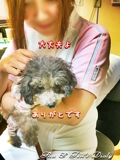 005IMG_1644_20161007221912749.jpg