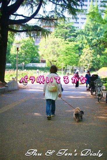 008IMG_2411.jpg