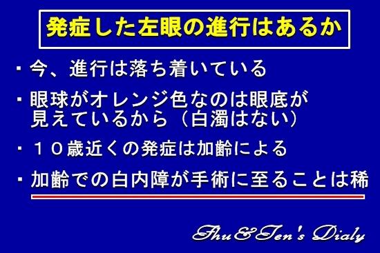 009IMG_1091b.jpg