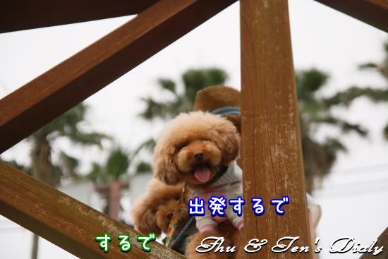 011IMG_4824.jpg