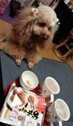 おやつ食べる時間2