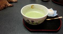 うさぎさん お抹茶所望1