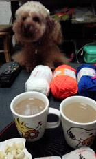 お茶の後 編み編みタイム2