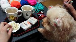 お茶の後 編み編みタイム5