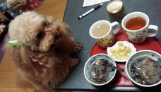 Lets tea time 1