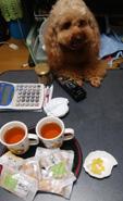 夕方再びお茶1