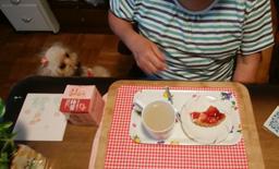 苺タルトで午後ティ~1
