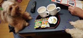 外でお茶してまたお茶時間1
