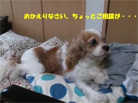 01_convert_20160622183006.jpg