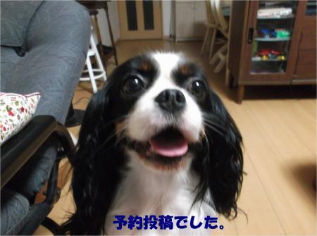 01_convert_20160722173837.jpg