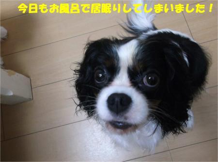 01_convert_20161025185401.jpg