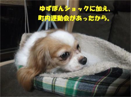 02_convert_20161003184731.jpg