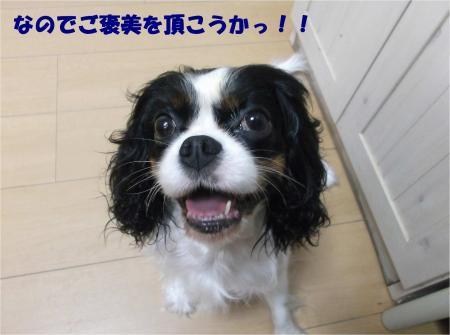 02_convert_20161025185410.jpg