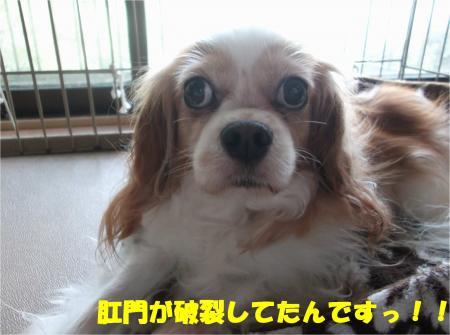 02_convert_20161027183534.jpg