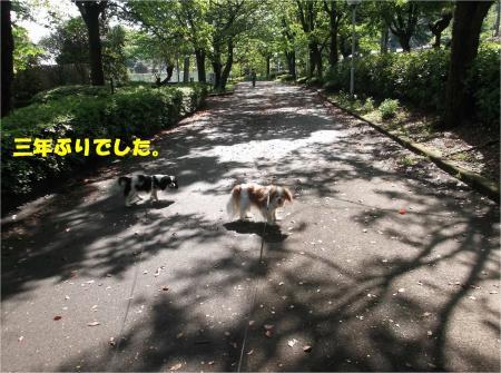 03_convert_20160430162409.jpg