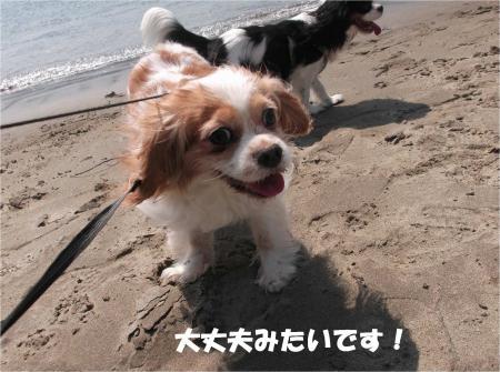 03_convert_20160502182601.jpg