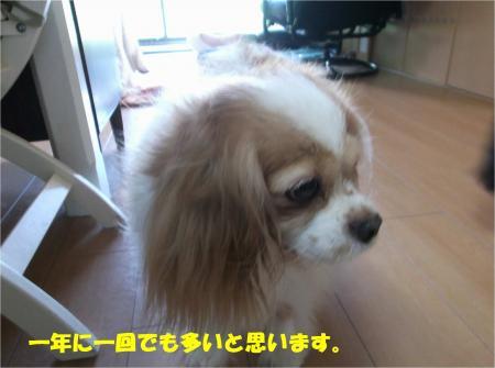 03_convert_20160509181357.jpg