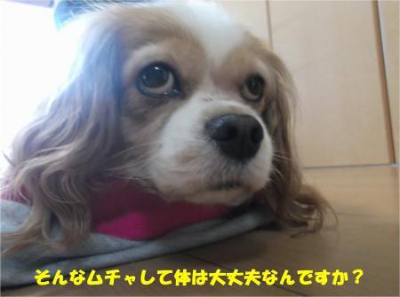 03_convert_20160606182430.jpg