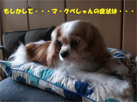 03_convert_20160715175525.jpg