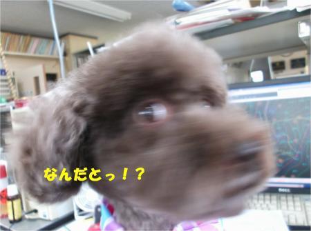 03_convert_20161107174127.jpg