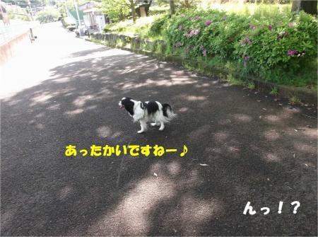 04_convert_20160430162418.jpg