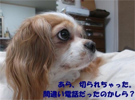 04_convert_20160609174004.jpg