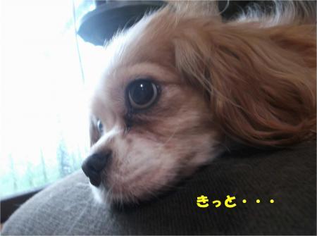 04_convert_20160708192449.jpg