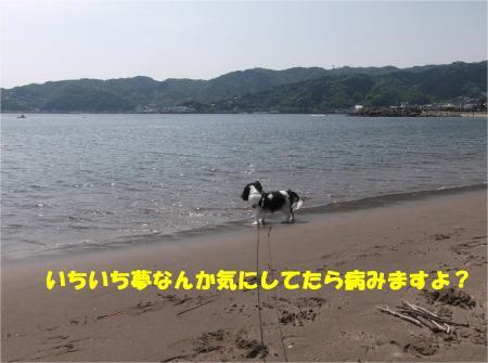 05_convert_20160502182620.jpg