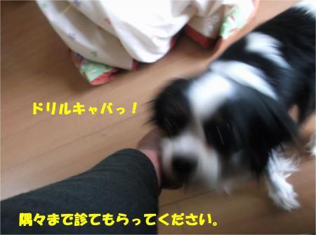 05_convert_20160531183017.jpg
