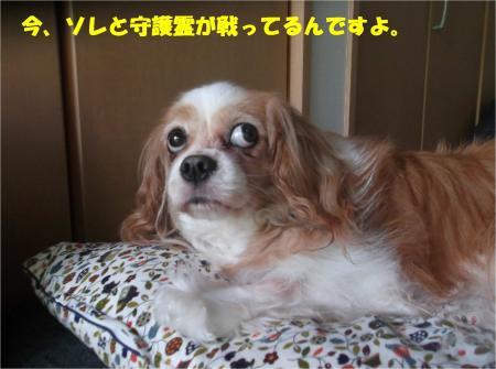 05_convert_20160704175605.jpg