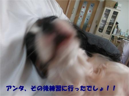 05_convert_20161003184947.jpg